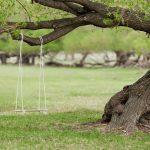 Los 10 mejores columpios para árboles