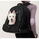 Los 10 mejores mochilas porta perros
