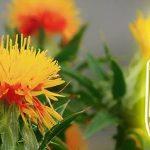 Los 10 mejores aceites de cártamo
